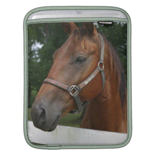 Sweet Chestnut Horse iPad Sleeve