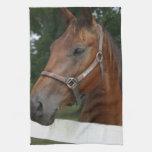 Sweet Chestnut Horse Kitchen Towel