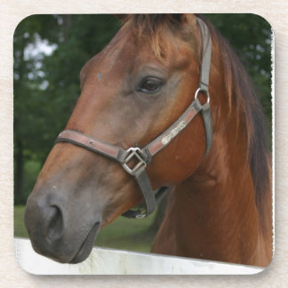 Sweet Chestnut Horse Set of Six Coasters