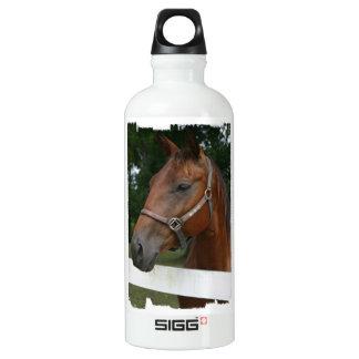Sweet Chestnut Horse SIGG Traveler 0.6L Water Bottle