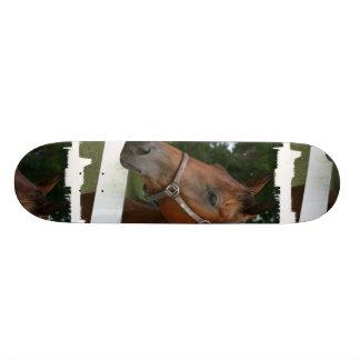 Sweet Chestnut Horse Skateboard