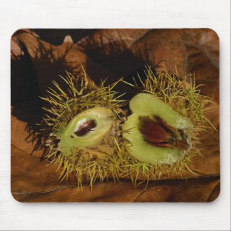 Sweet Chestnut Mouse Mat