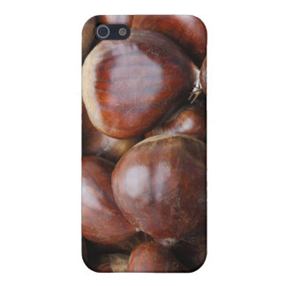 Sweet chestnuts cover for iPhone SE/5/5s
