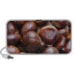 Sweet chestnuts travel speaker