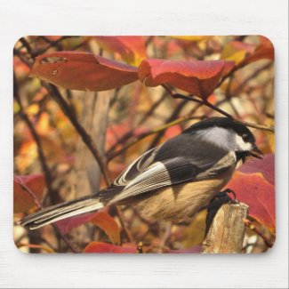 Sweet Chickadee Bird in Pink Autumn Foliage Mouse Pad