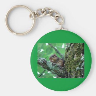 Sweet Chipmunk in a Tree Apparel and Gifts Keychain