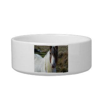 Sweet Connemera Pony Bowl