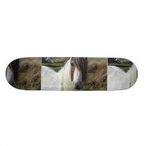 Sweet Connemera Pony Skateboard