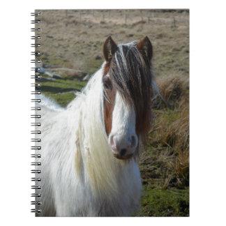 Sweet Connemera Pony Spiral Notebook