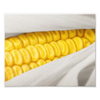 Sweet Corn Photo Print