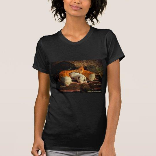 Sweet Cowboy Dreams T-Shirt