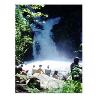 Sweet Creek Falls Postcard