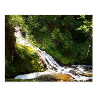 Sweet Creek Trail Post Card