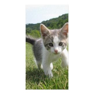 Sweet Cute Cat Card