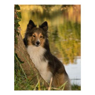 Sweet Cute Dog Letterhead