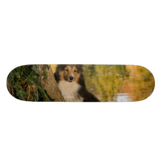Sweet Cute Dog Skateboard Deck