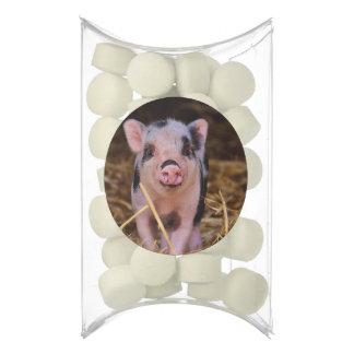 Sweet Cute Pig Chewing Gum