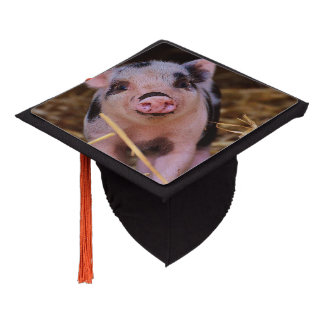 Sweet Cute Pig Graduation Cap Topper