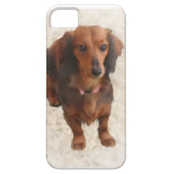 Case-Mate Vibe iPhone 5 Case with Dachshund Phone Cases design