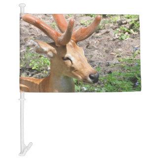 Sweet Deer Car Flag