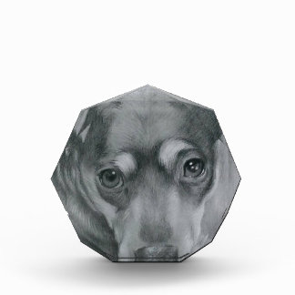 Sweet dog acrylic award