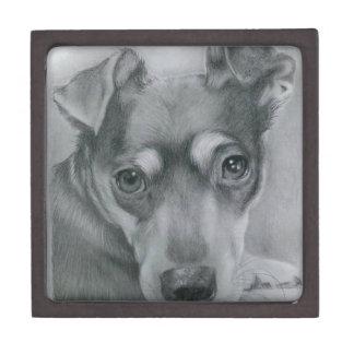 Sweet dog gift box