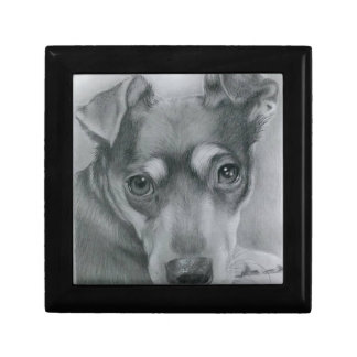 Sweet dog jewelry box