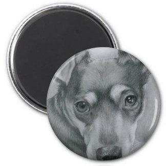Sweet dog magnet