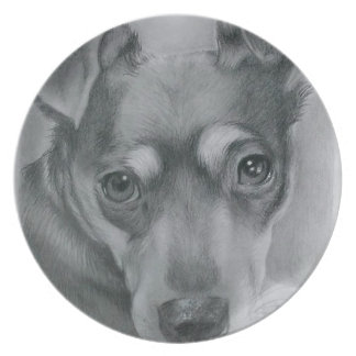 Sweet dog plate