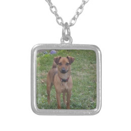 sweet dog silver plated necklace