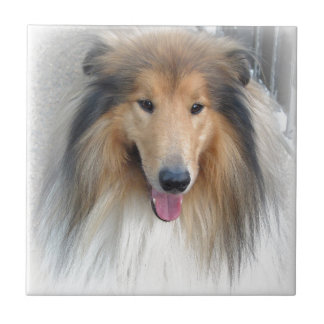 Sweet Dog Tile