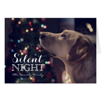Sweet Doggie Looking At Tree Card