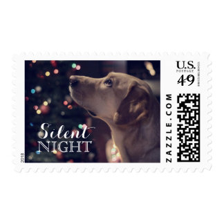 Sweet Doggie Looking At Tree Postage Stamp