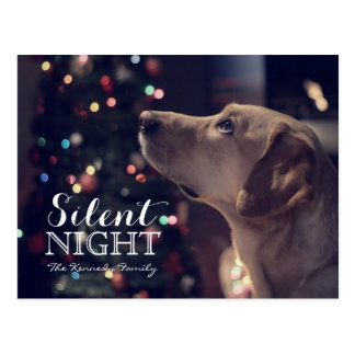 Sweet Doggie Looking At Tree Postcard
