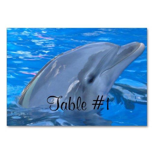 Sweet Dolphin Table Card