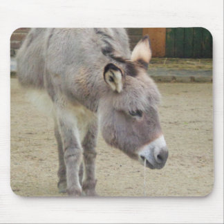 Sweet Donkey, Animal Grey, Horse Family Mouse Pad