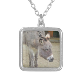 Sweet Donkey, Animal Grey, Horse Family Silver Plated Necklace