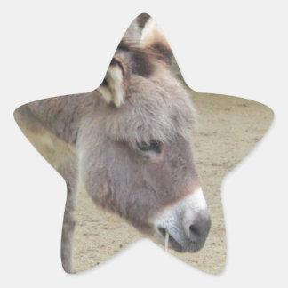 Sweet Donkey, Animal Grey, Horse Family Star Sticker