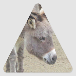 Sweet Donkey, Animal Grey, Horse Family Triangle Sticker