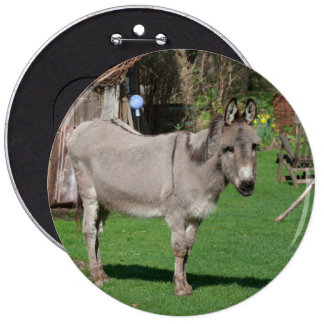 Sweet Donkey In The Garden Button