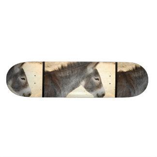 Sweet Donkey Skateboard Deck