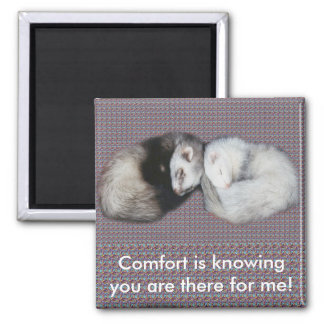 Sweet Dreams Ferrets 2 Inch Square Magnet