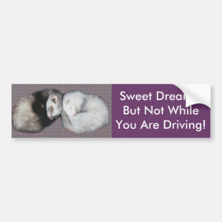 Sweet Dreams Ferrets Bumper Sticker