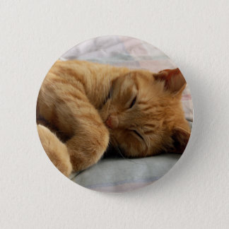 Sweet Dreams Pinback Button