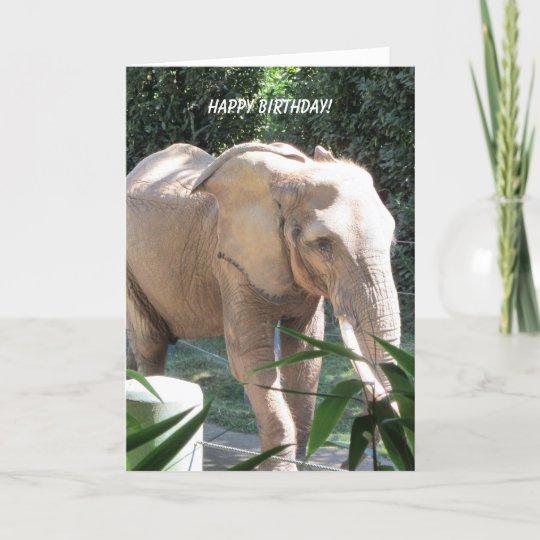 Sweet Elephant Birthday Wishes Card