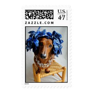 Sweet Ellie Mae Postage Stamp