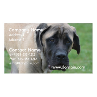 Sweet English Mastiff Business Card Template