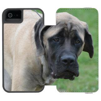 Sweet English Mastiff Incipio Watson™ iPhone 5 Wallet Case