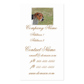 Sweet Entlebucher Mountain Dog Double-Sided Standard Business Cards (Pack Of 100)