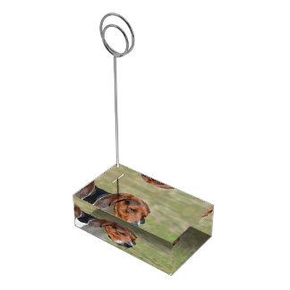 Sweet Entlebucher Mountain Dog Table Card Holder